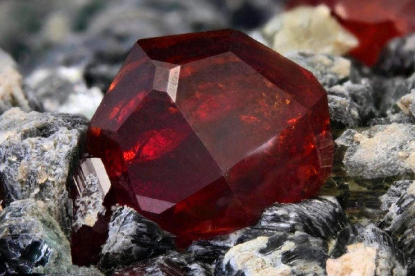 9 Most EXPENSIVE Things Found in Nature